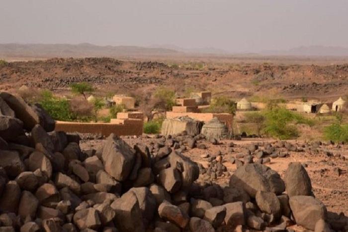Trois tonnes de cannabis saisies à Niamey