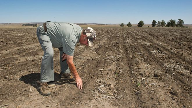 Afrique du sud, des fermiers blancs expropriés ?