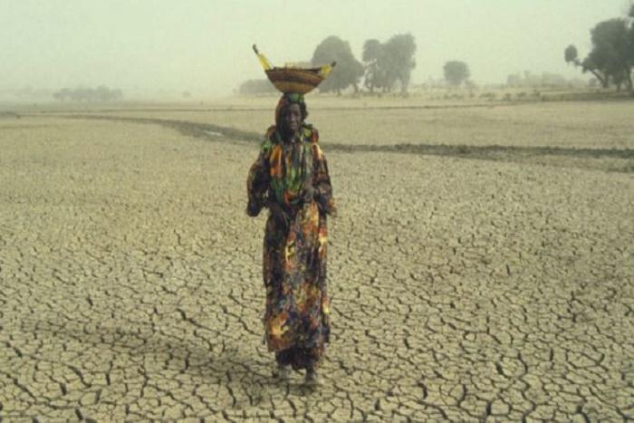13 millions de personnes en détresse au Sahel