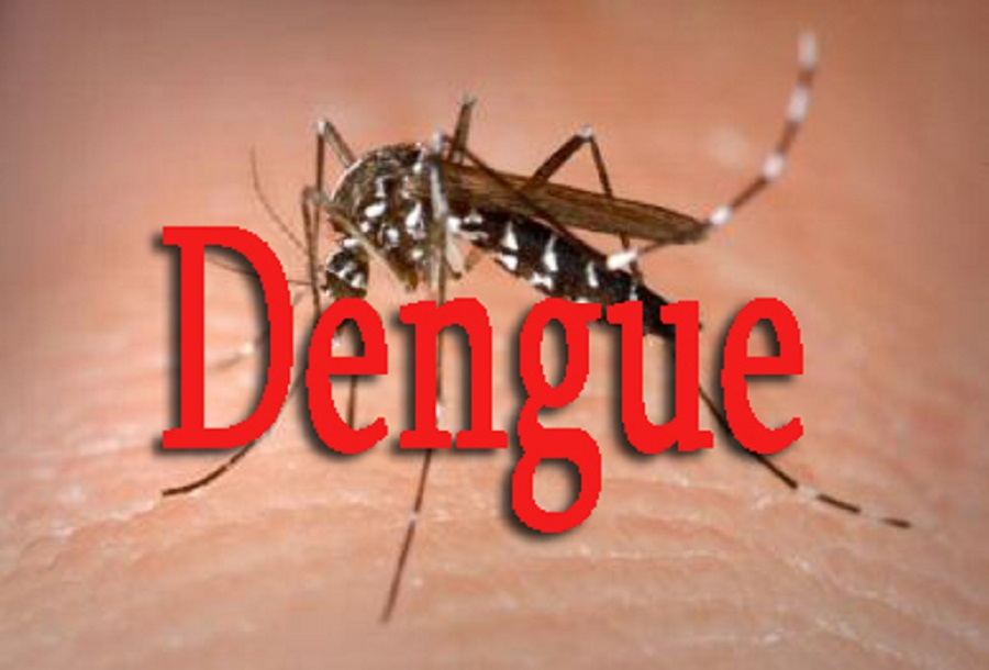 Propagation de la Dengue : le nombre de cas passe à 29, deux autres communes de Fatick touchées