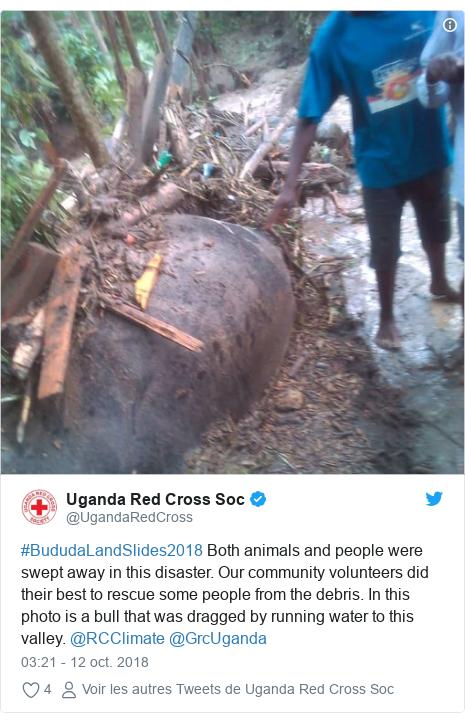Un glissement de terrain fait plus de 40 morts en Ouganda