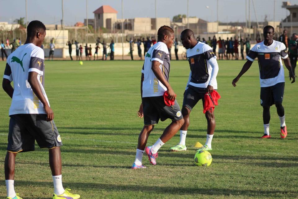 """#CAN2019 - Stage des """"lions"""" : la Fédé déjoue les plans de Cissé"""