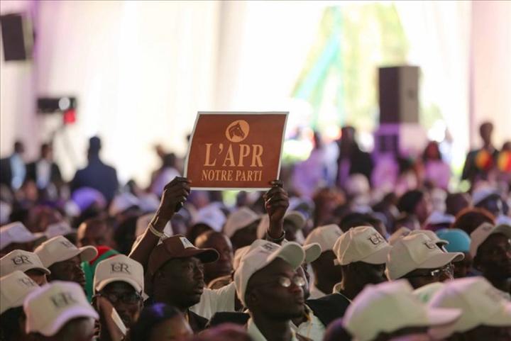 """Twitter : la vidéo des """"MARRONS DU FEU"""" indigne et affole les internautes sénégalais"""