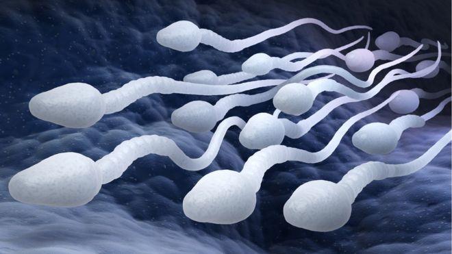 La pilule contraceptive pour hommes a passé avec succès les premiers tests cliniques