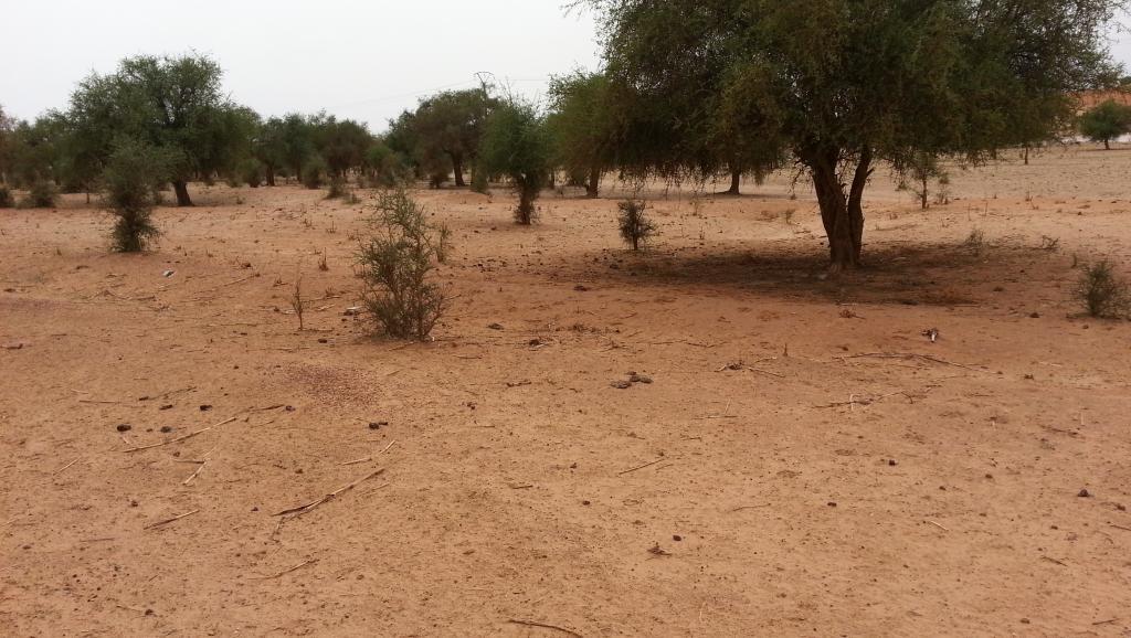 Niger: l'attaque meurtrière près de Tillabéry rappelle celle d'octobre 2017