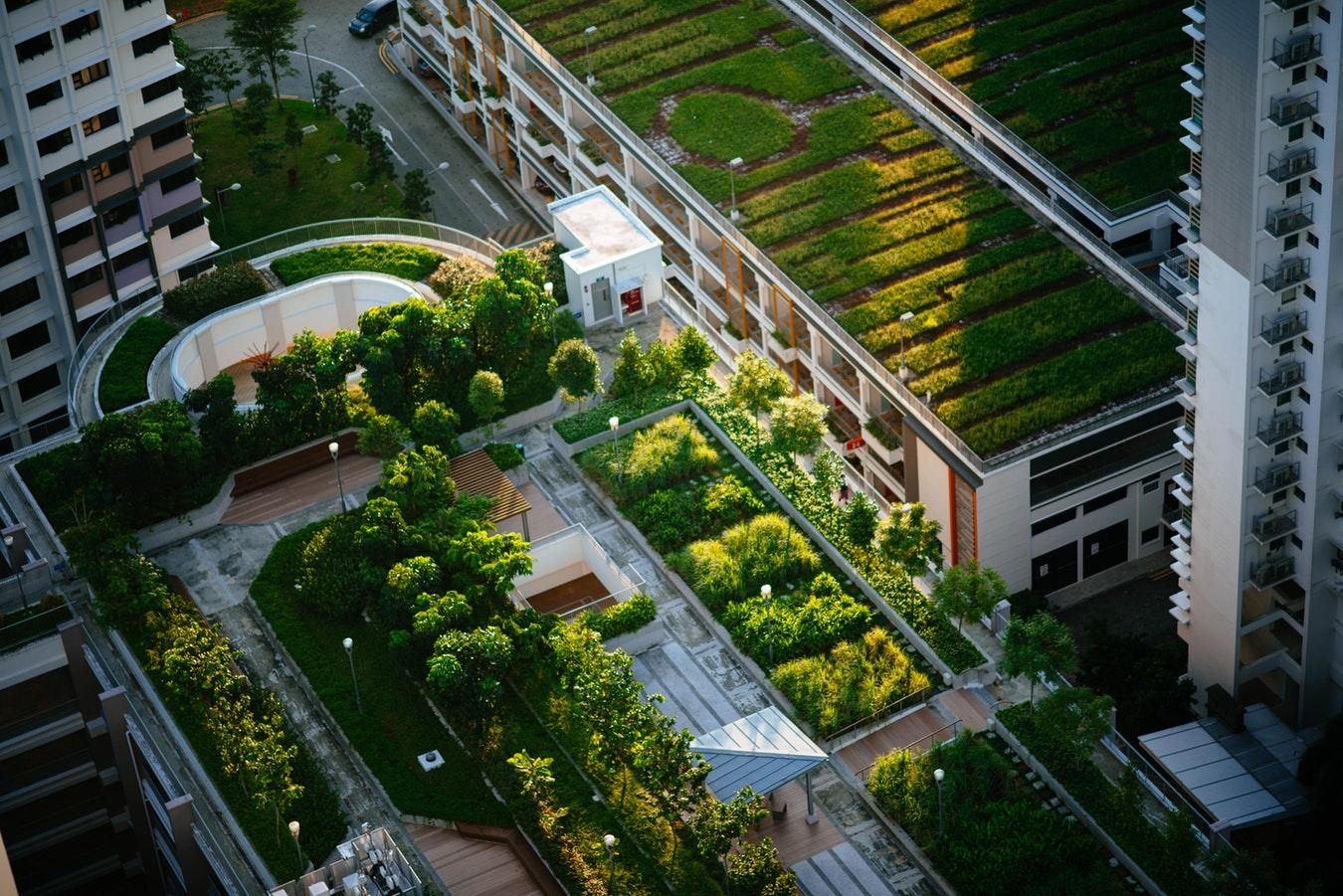 Le futur de l'Afrique et de la France se trouve dans les villes durables (diplomate)