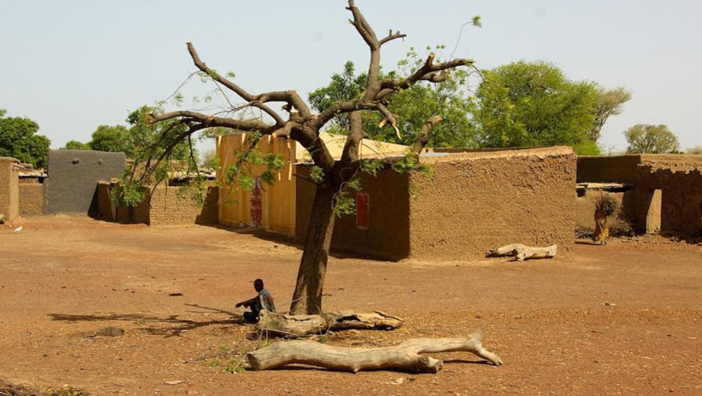Mali: une nouvelle attaque vise des villages peuls dans le centre