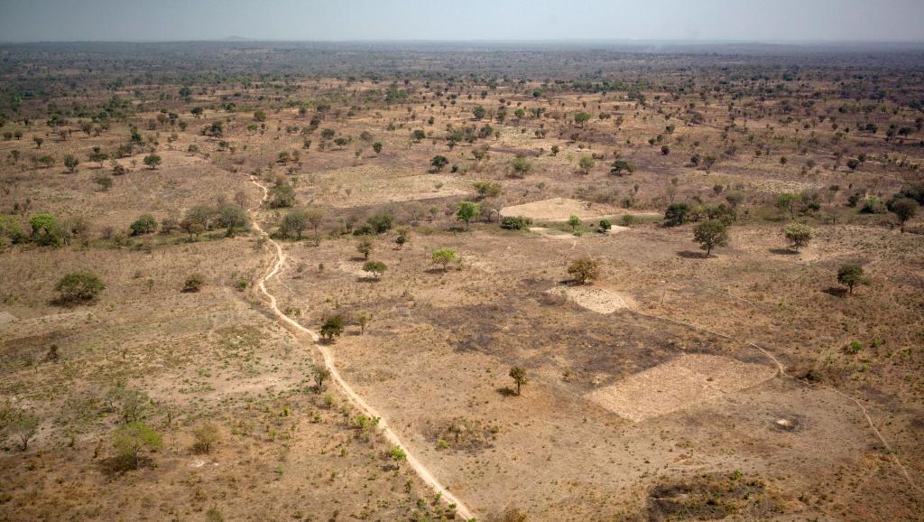 RCA: un rapport accablant pour les 3R après le massacre de Paoua