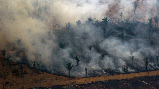 """Incendies en Amazonie : L'Angola et la République démocratique du Congo """"ont plus de foyers"""""""