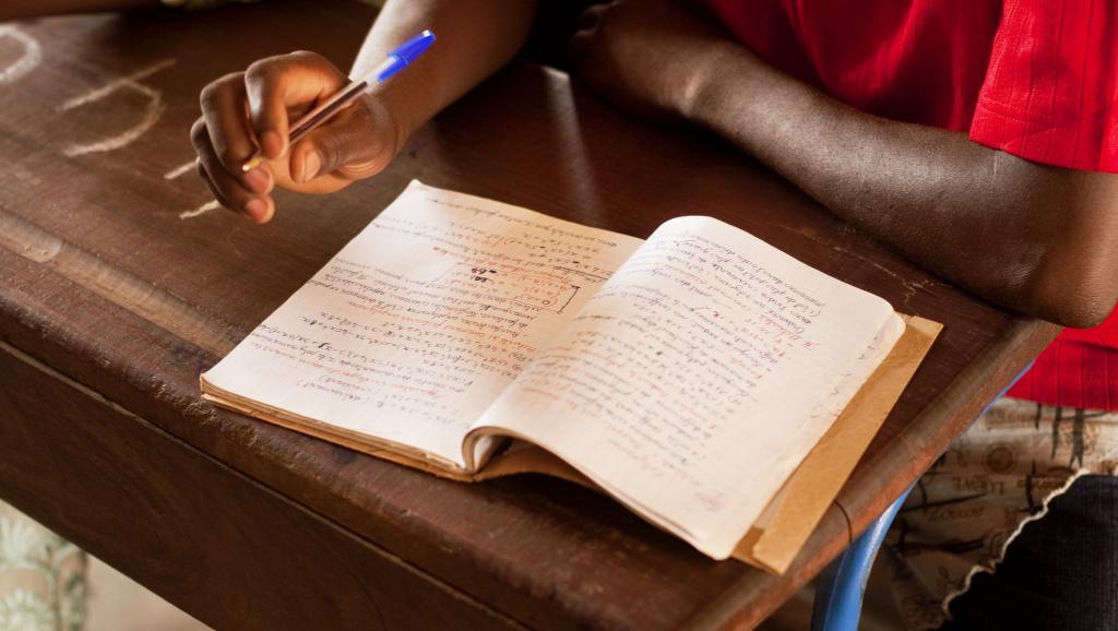 Mali: des présumés jihadistes enlèvent six enseignants dans la région de Mopti