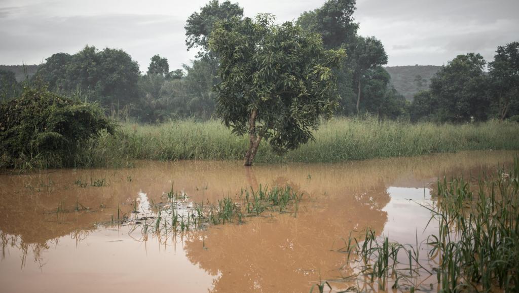 RDC: la province du Sud-Ubangi sous les eaux