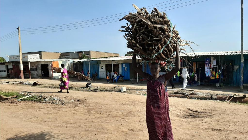 Soudan du Sud: les risques de viols encourus par les femmes déplacées