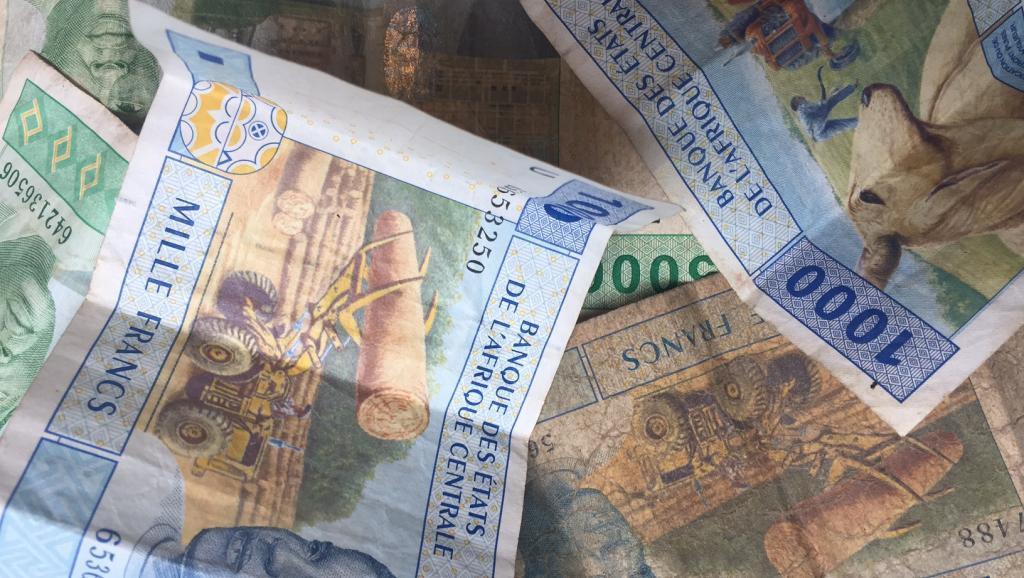 L'Afrique centrale veut aussi réformer le franc CFA
