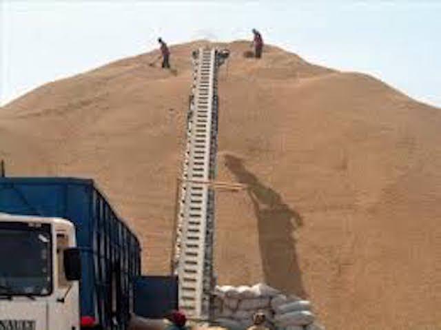 Campagne agricole: les inquiétudes des privés stockeurs et des transporteurs