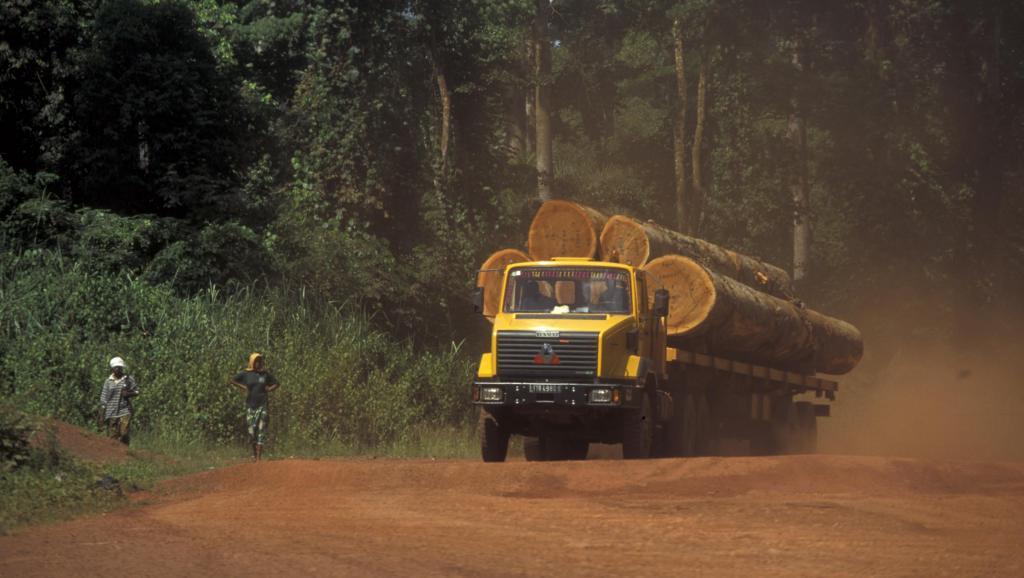 Cameroun: fluidifier le trafic des marchandises reste un casse-tête