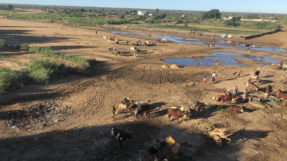 Sécheresse à Madagascar: 500 000 personnes souffrent d'insécurité alimentaire