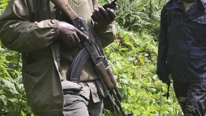 Le parc national des Virunga, en RDC, frappé par l'attaque la plus meurtrière