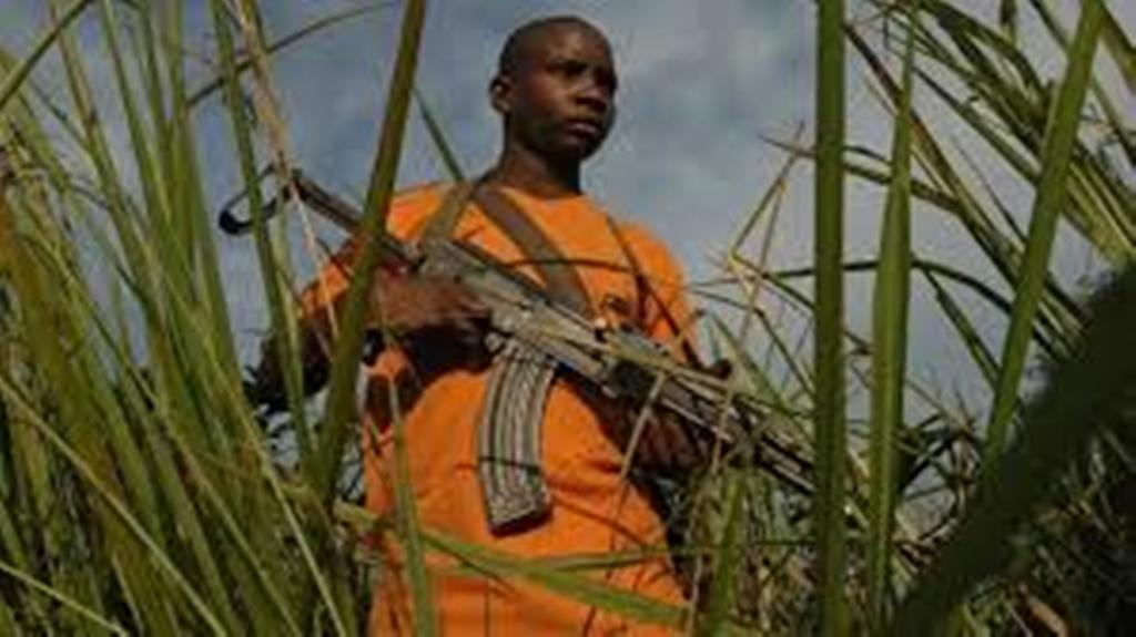 RDC: où en est-on du désarmement du groupe armé FRPI deux mois après l'accord de paix?