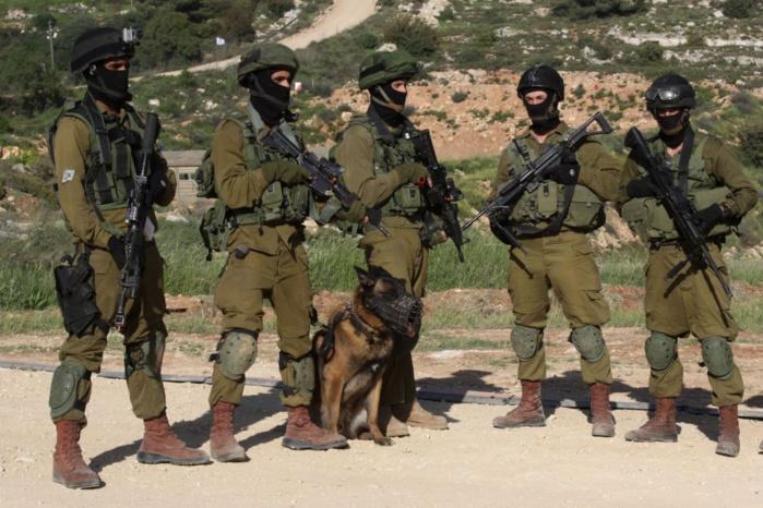 L'armée israélienne tire sur quatre personnes menaçant sa frontière syrienne, selon un communiqué