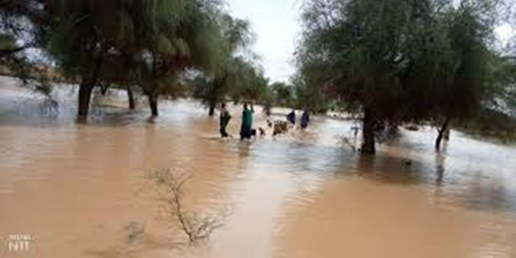 Inondations à Linguère : les populations du village de Nginth perdent leurs semences et bien d'autres biens