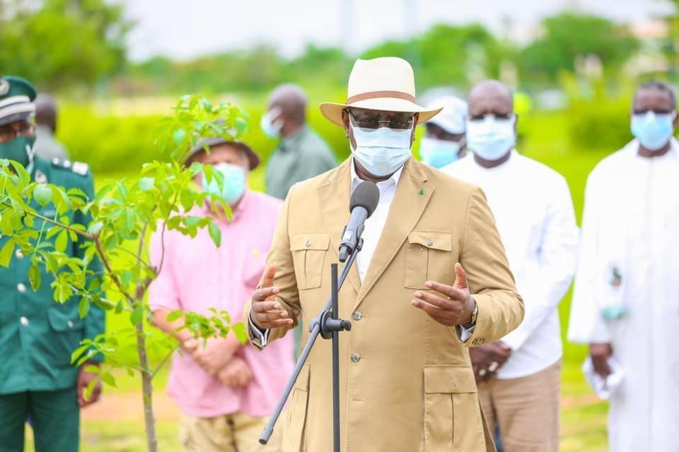 Journée internationale de l'Environnement: Macky plante son baobab et appelle les Sénégalais au reboisement