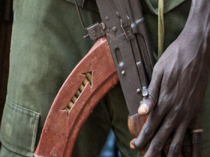 Casamance : trois (3) jeunes retenus par des hommes non-encore identifiés dans la forêt de Bissine