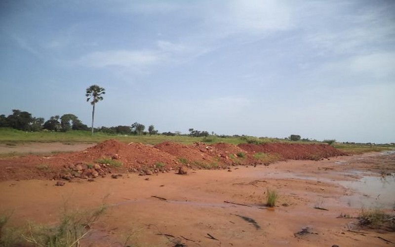 Agriculture-Foncier au Sénégal: un projet veut récupérer 800 hectares de terres salées à Fatick et Kaolack