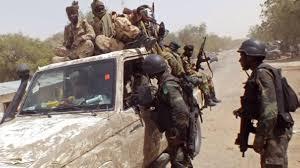 Cameroun: une attaque jihadiste endeuille le village de Zeleved, dans l'Extrême-Nord