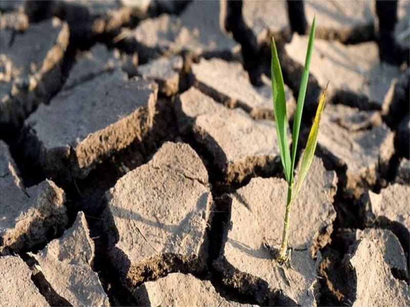 Changement climatique : l'analyse des températures montre que les objectifs de l'ONU peuvent être atteints