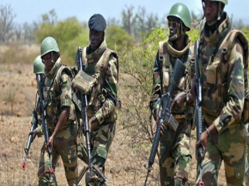 Casamance - Forêt de Bissine: Deux corps en état de décomposition retrouvés par l'armée