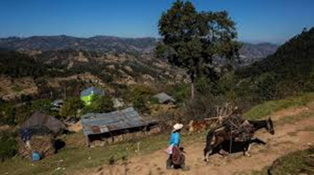 Massacre de migrants au Mexique: deux Guatémaltèques et deux Mexicains identifiés