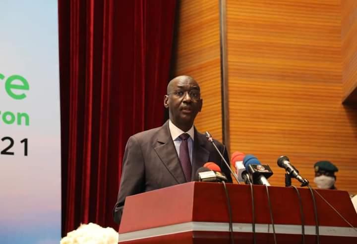 Clôture des assises nationales sur le coton au Mali: le plan de sauvetage défini
