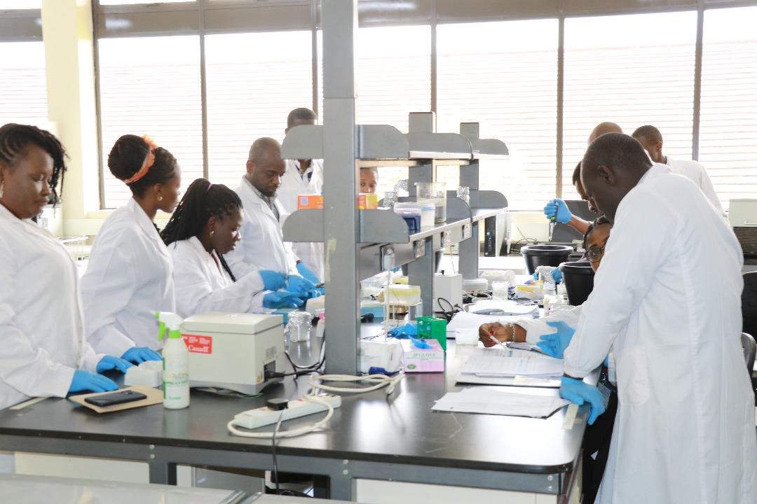 Covid-19: l'impact de la recherche One Health en Afrique.
