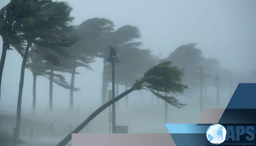 L'Anacim annonce un vent fort sur la côte sénégalaise à partir de mercredi