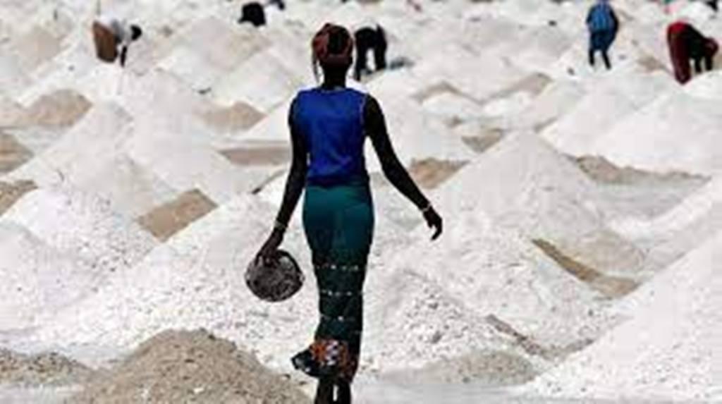 """""""La Francophonie avec Elles"""" : L'OIF au service de l'entreprenariat des femmes"""