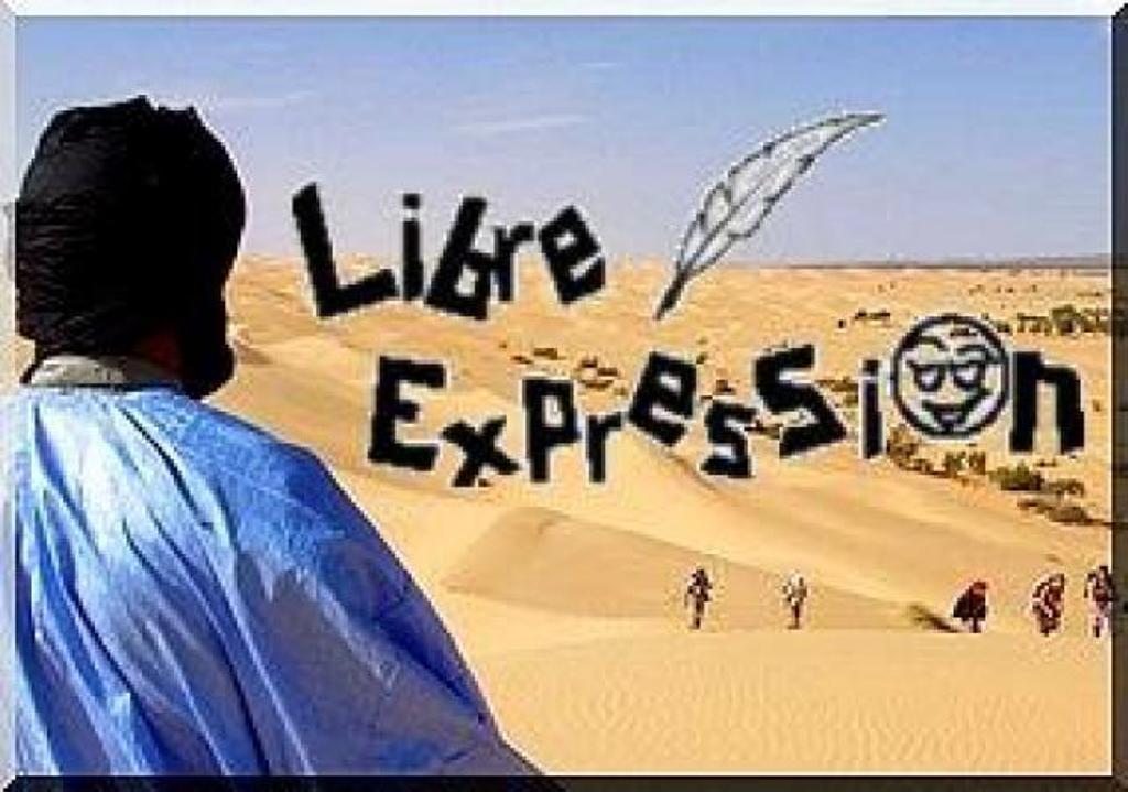 DDR, l'accélération de la création d'une armée de rebelles, aux frais du PEUPLE malien.