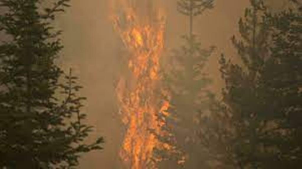 Les flammes ravagent toujours l'Oregon et la Californie