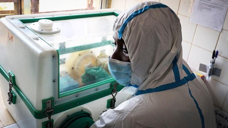 Covid-19, Choléra, Ebola et Marburg : L'Afrique de l'Ouest est mise à rude épreuve
