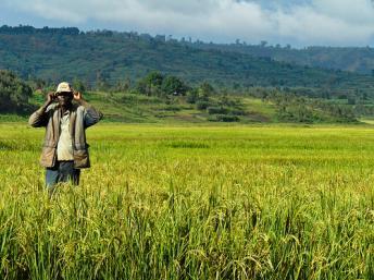 À qui appartient la terre ? C'est la question à laquelle la Commission Terre du Burundi doit répondre quand le propriétaire, chassé par la guerre, rentre au pays et retrouve son bien dans d'autres mains.
