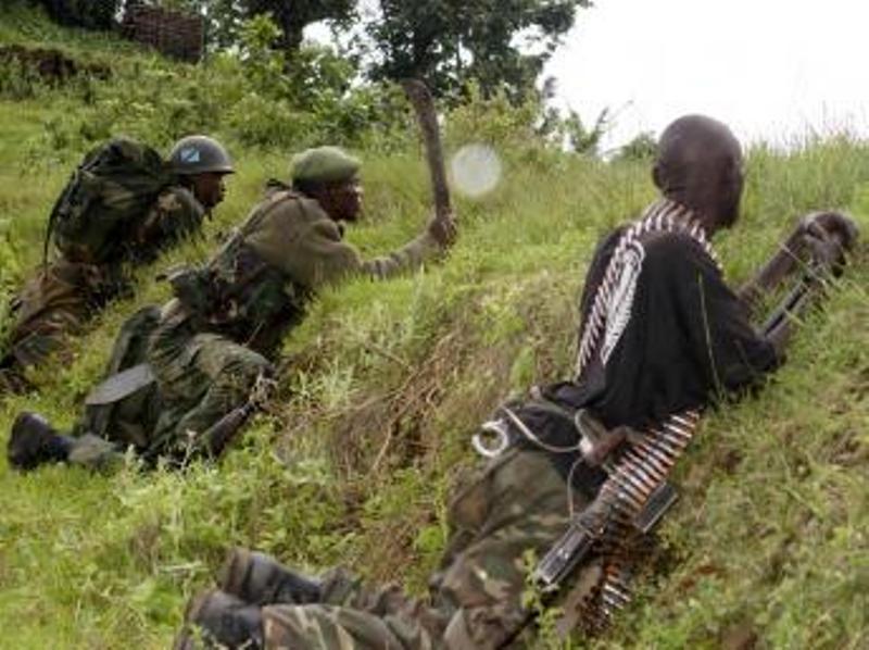 Des éléments des FARDC en opération au nord de Goma, le 31 octobre 2013. REUTERS/Kenny Katombe