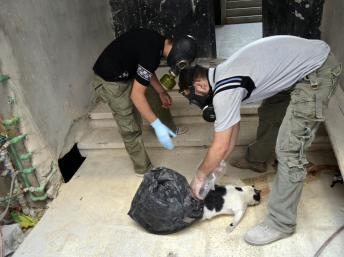 Des activistes portant un masque à gaz récoltent des preuves d'utilisation d'armes chimiques dans la zone de Zamalka, dans la banlieue de Damas, le 22 août 2013. REUTERS/Bassam Khabieh