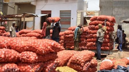 Filière Oignon :L'Etat du Sénégal bloque 7000 tonnes au Port l'UNACOIS menace