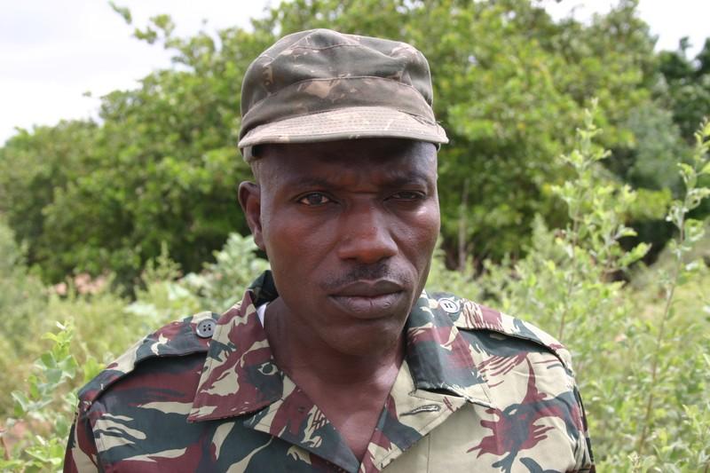 Casamance : César Atoute Badiate s'oppose à la réalisation de 150 km de piste