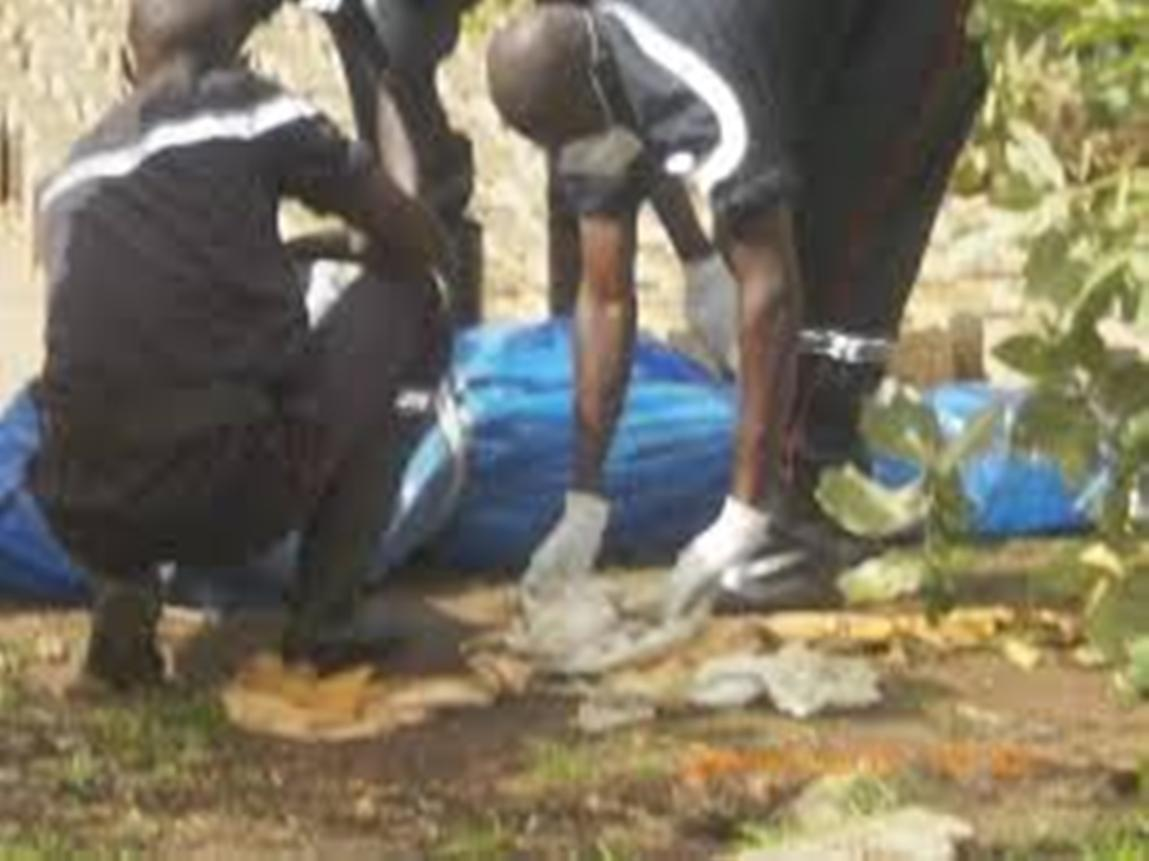 Tuerie des malades mentaux àTamba: la lettre ouverte d'Ansoumana Dione au président Macky