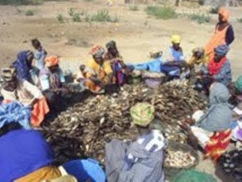 Transformation des produits: les femmes Missira repoussent le concept de base et s'imposent en leader
