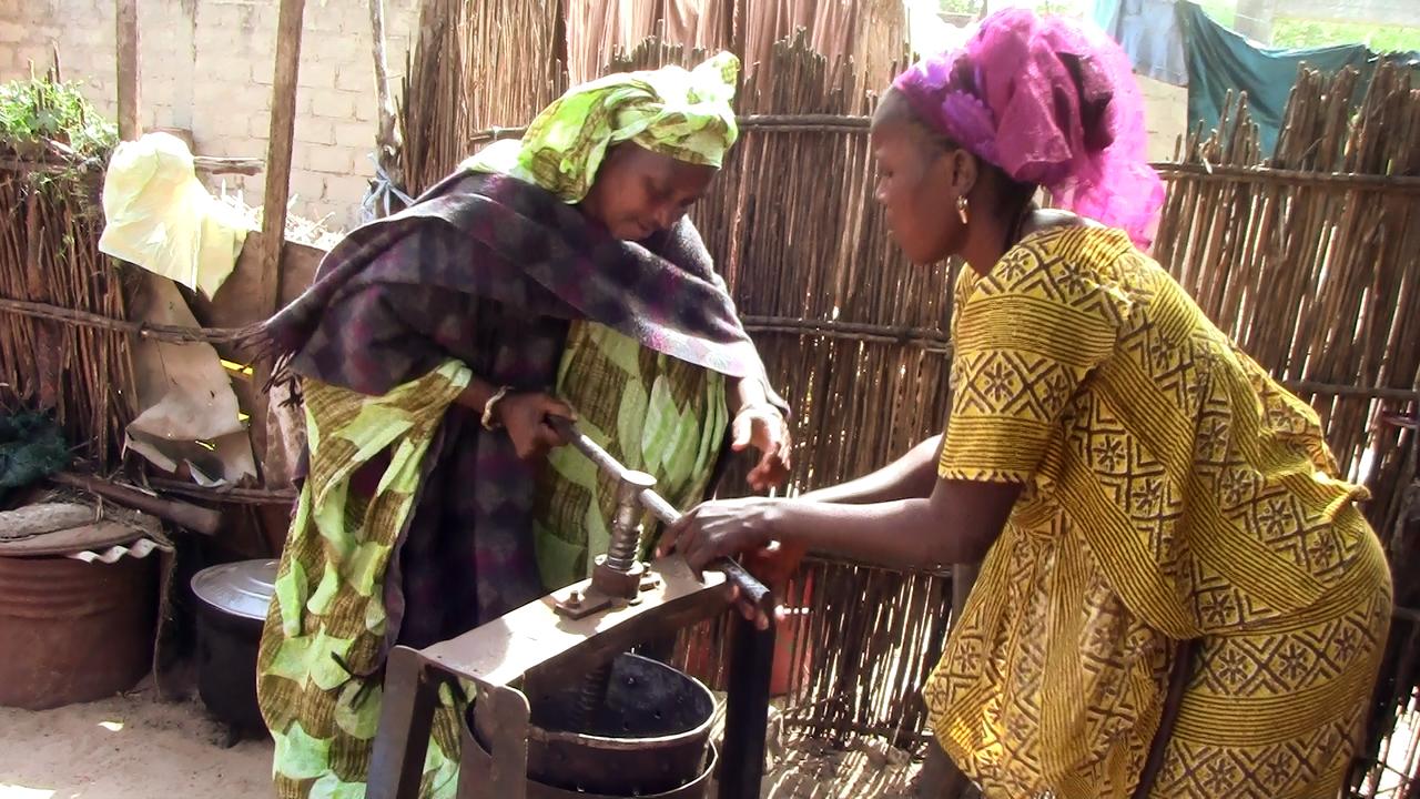 Maty qui produit de l'huile d'arachide avec l'appui de sa belle fille