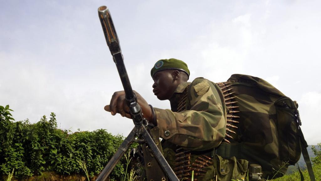 RDC: la lutte contre les FDLR pose question