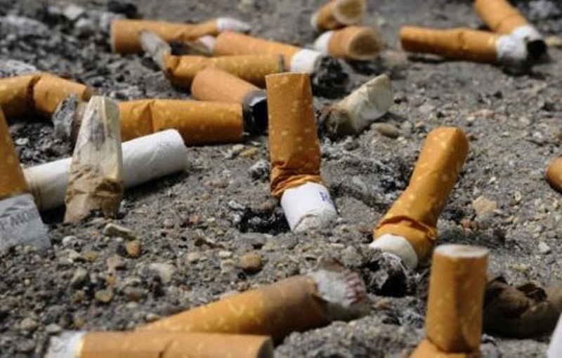 Assemblée nationale: les députés décidés à barrer la route au tabac