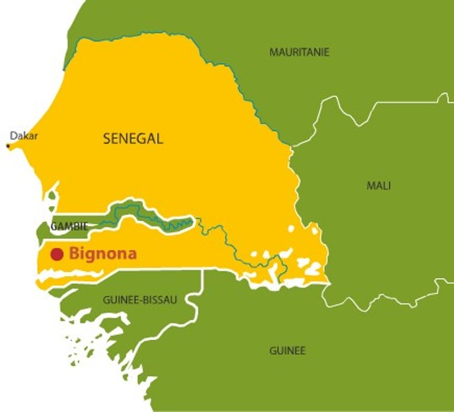 Course poursuite macabre dans les rizières de Bignona : Pourchassé par des gendarmes, un membre du MFDC meurt