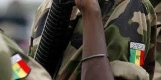Le Sénégal veut être à l'avant-garde dans la recherche de la paix (ministre)